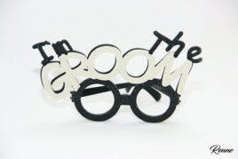 משקפי Im the Groom